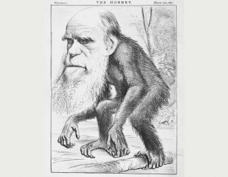 """A Venerable Orang-outang"", a caricature of Charles Darwin as an ape in The Hornet"